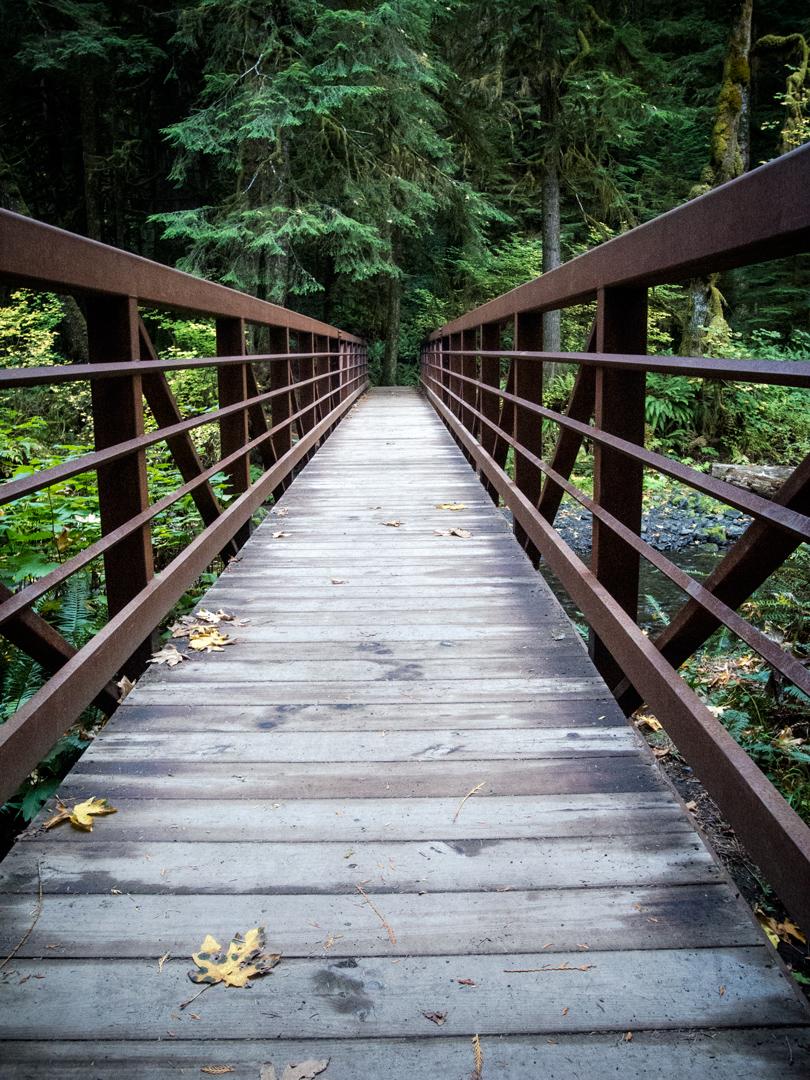 bridge-walk